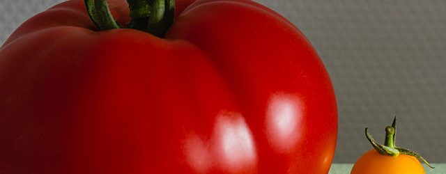 640px-2013_09_10_tomate