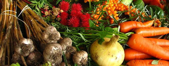 640px-Ecologically_grown_vegetables