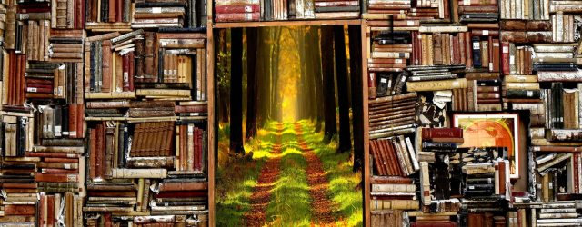 Da una libreria si apre il passaggio verso un sentiero che conduce in una foresta